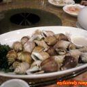 Boiled Stombus Shell
