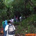 Trekking to canopy walk