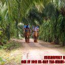 Day-4---Jungle-trekking-13