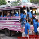 Day-3---pink-bus1
