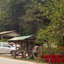 Durian-Manggis