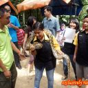 eeeee-snake